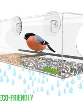 Clear Window Bird Feeder